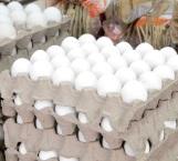 Vigilarán la venta de huevo por el precio