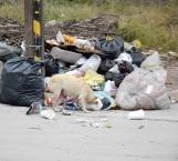 La viven regando mascotas e indigentes en las calles