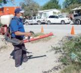 Temen brote de dengue u otra enfermedad en la Almaguer