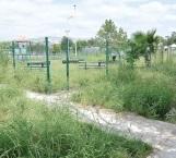 Plaza convertida en una selva que contamina sector