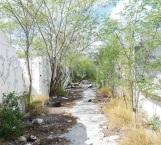 Piden escuela en antiguo tianguis de Los Muros