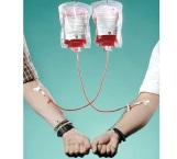 El trasplante más común