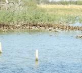 Queda proyecto  ecoturístico en el limbo en la Villa