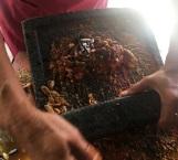 Chile, símbolo cultural que enriquece la cocina