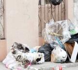 Falta conciencia para conservar la ciudad
