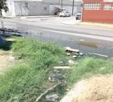 Hasta criadero de ajolotes hay en fuga de aguas negras