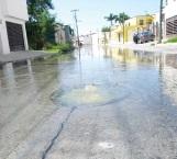 Reportan otro brote de aguas negras hediondas