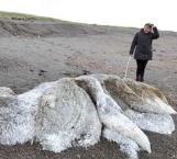 'Monstruo peludo' aterra en Rusia