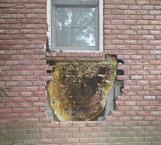 Enorme panal se escondía dentro de la muralla