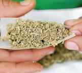 Se debe de estudiar a fondo uso lúdico de la mariguana