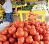 Carísimo venden el tomate ante problemática por el clima