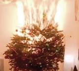 Previenen sobre las lucecitas navideñas