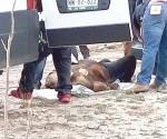 Identifican cuerpo de ejecutado