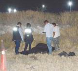 Encuentran a un muerto en descomposición