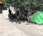 Saldo Blanco en albergues de migrantes, tras la Tormenta