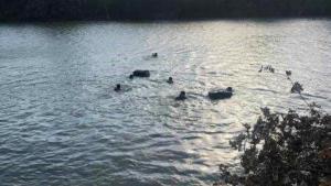 Descubren cruce de droga por el río Bravo