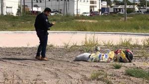 Movilización policiaca… por dos perros muertos