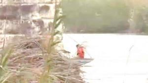 Mueren migrantes ahogados en el río