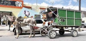 ¿Deben desaparecer los carretoneros de Reynosa?