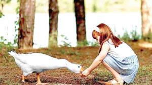 Los niños son un ejemplo de compasión con los animales