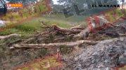 Ecocidio en Río Bravo