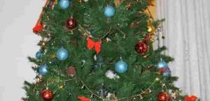 ¿Cómo será su Árbol de Navidad?