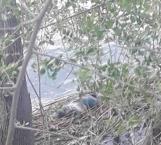 Bomberos de Camargo recuperan cuerpo de hombre ahogado