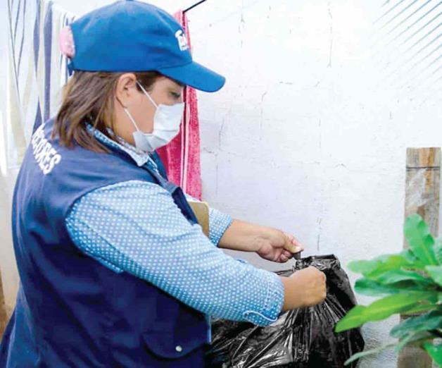 Complica el dengue pandemia de Covid