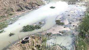 Contaminan el dren Río Bravo