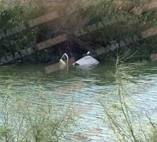 Al descubierto camioneta en canal, al bajar nivel de agua
