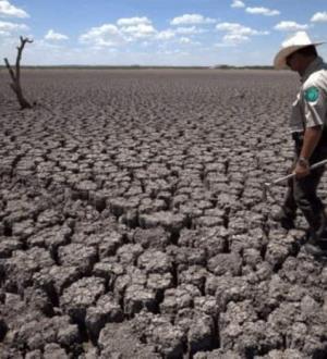 Entra Tamaulipas en sequía