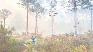 Avanza incendio en Miquihuana