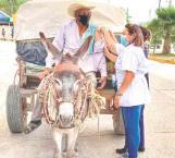 Vacunan abuelitos de 21 municipios