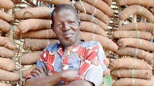 Junto a sus 27 hijos y 7 esposas han cosechado 1 millón de ñames