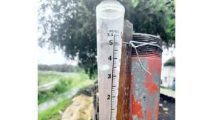 Benefician las lluvias