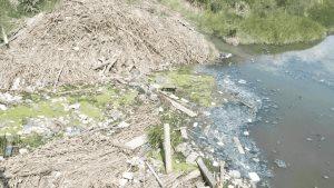 Tiran más basura a canales y drenes