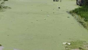 Se desborda laguna de aguas residuales