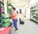 Invitan a visitar biblioteca local