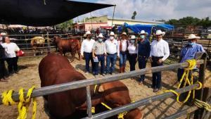 Subastan 127 sementales en San Fernando