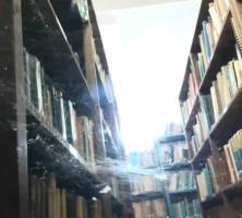 Evidencian mal estado de Biblioteca Panamericana