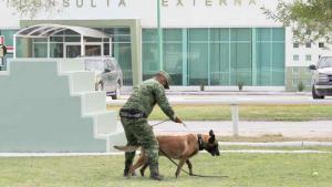 Muestra apoyo del escuadrón canino